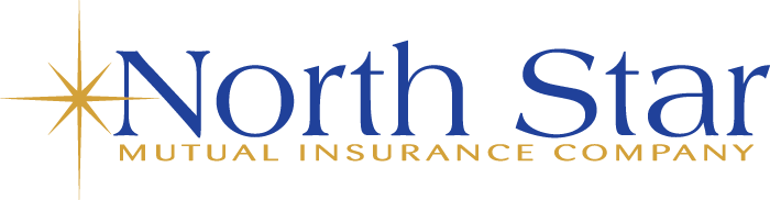North Star Mutual Insurance Company - logo